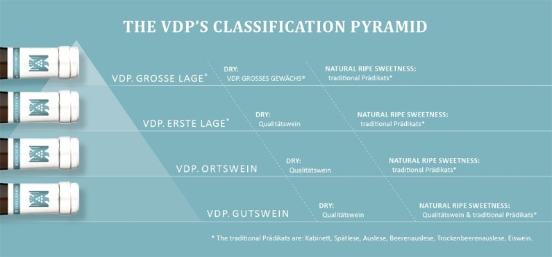 VDP Classification Pyramid