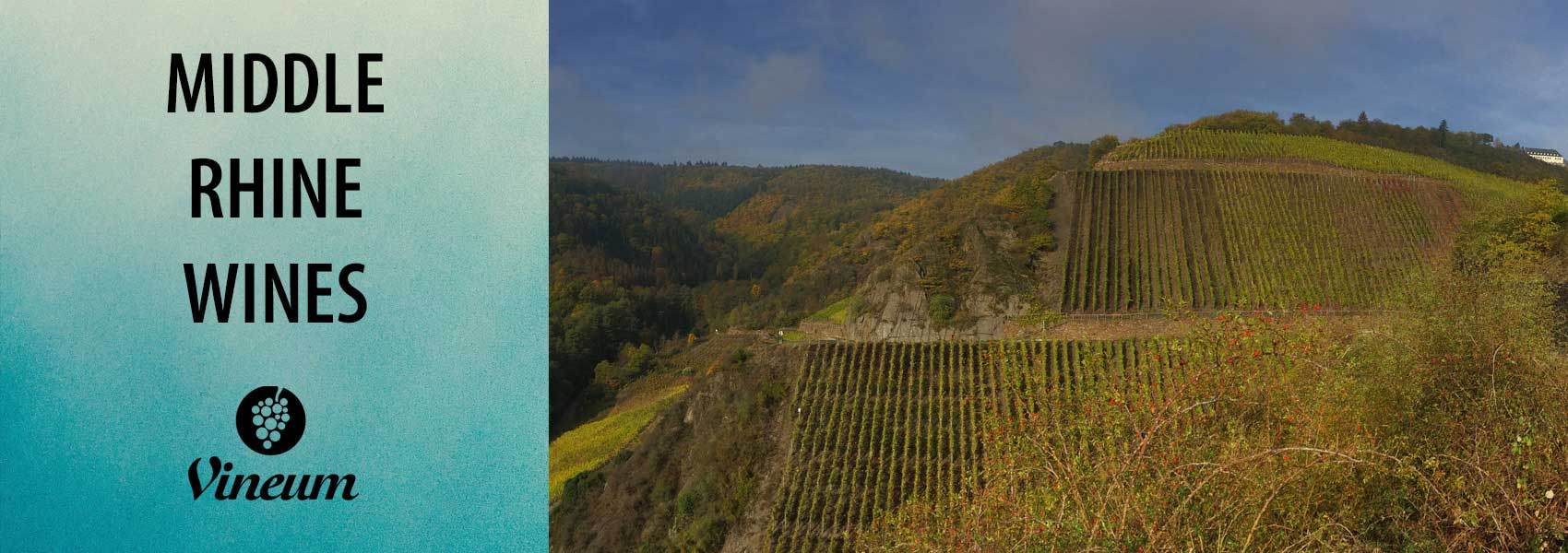Middle Rhine Wines